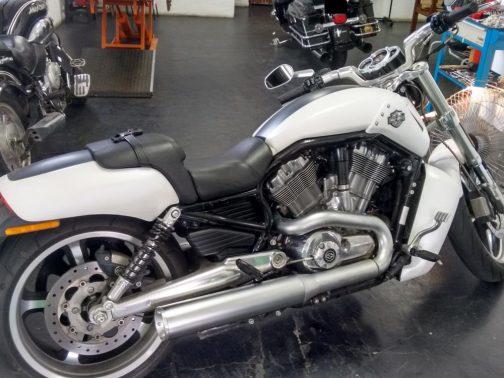 """Ponteiras para Harley Davidson Muscle 4"""" Corte Reto Curta Cromo Acetinado com Terminais Polidos"""